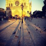 Notre Dame Paris in the summer PARIS BY EMY